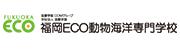 福岡ECO動物海洋専門学校